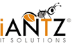 iANTZ IT SOLUTIONS